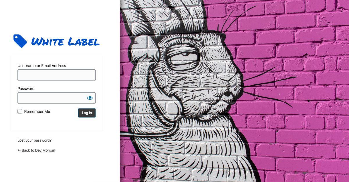 White Label custom WordPress login page example